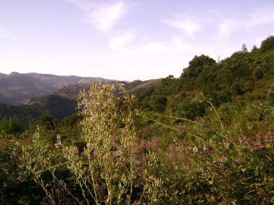 la montagne juillet 2009,