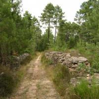 Sentier entre MERCUER et AILHON